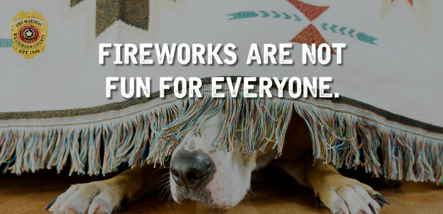 Image of a dog hiding under a bed stating Fireworks are not fun for everyone